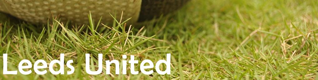 Leeds United News Sportsdroid